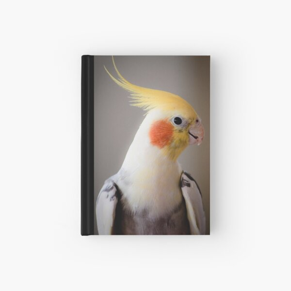 Daisy (or Dave?) Hardcover Journal