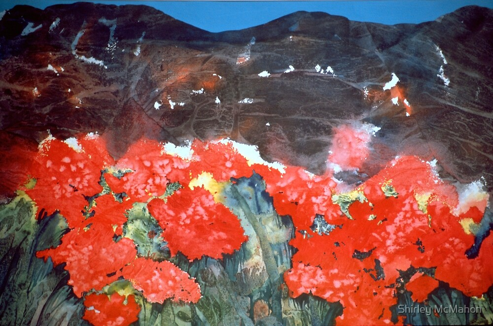 Red Fields Before My Eyes by Shirley McMahon