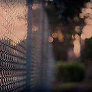 Fence No.3 by Sid Black