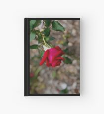 Rosebud and Raindrop  Hardcover Journal
