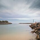 Tuncurry rock pool 372 by kevin Chippindall