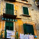 Hanging Out in Naples by Barbara  Brown