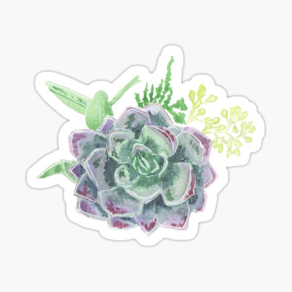 Purple Succulent Bouquet Sticker