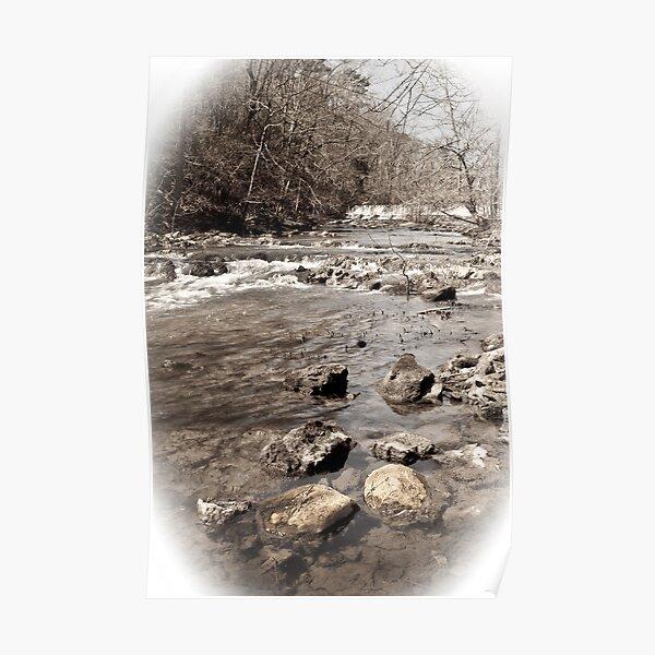creek view Poster