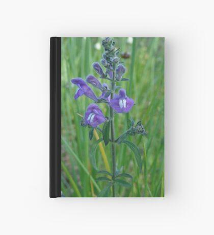 Florida Skullcap (Scutellaria floridana) Hardcover Journal