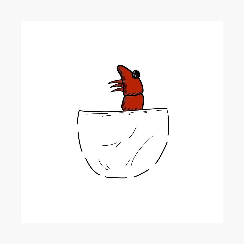 Der Shrimp in der Tasche Fotodruck
