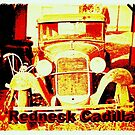 """""""Redneck Cadillac""""... prints and products by Bob Hall©"""