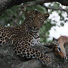 Successful Hunt by Zeanana