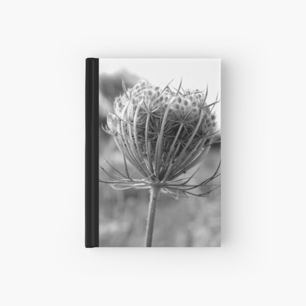 Beautifully alone Hardcover Journal