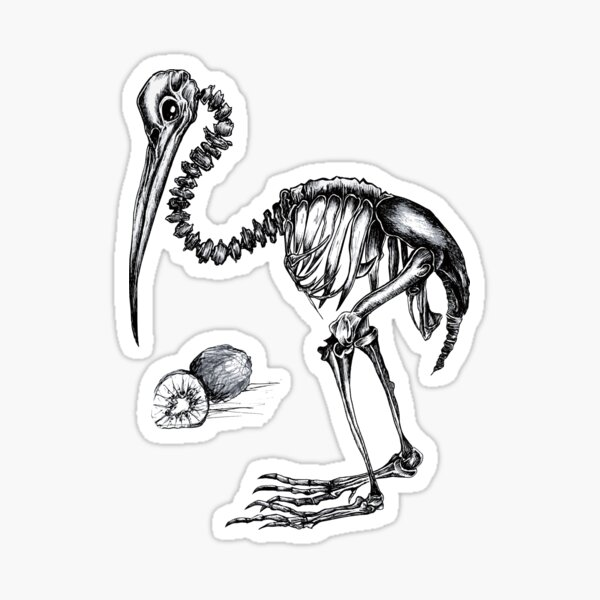 Bone animals: Kiwi, Absurd Art Sticker