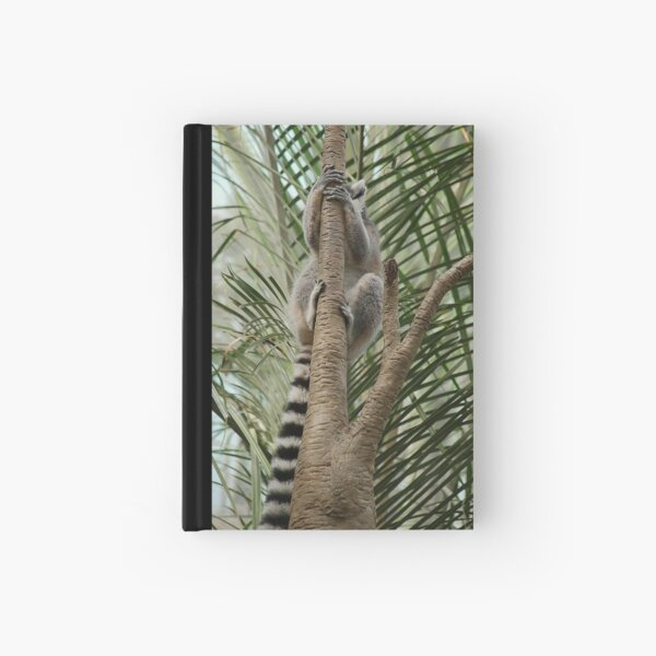 Always up Hardcover Journal