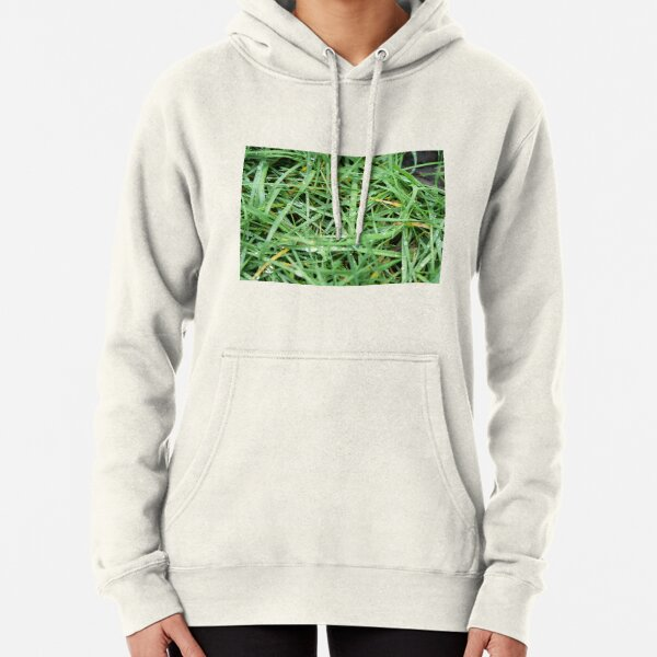 Morning dew drops on the grass Pullover Hoodie
