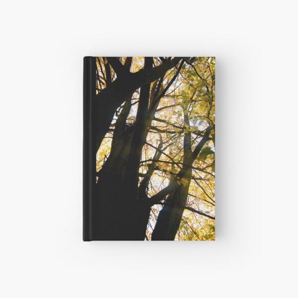 Golden Leaves Hardcover Journal