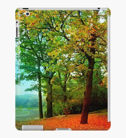 Red carpet iPad Case/Skin