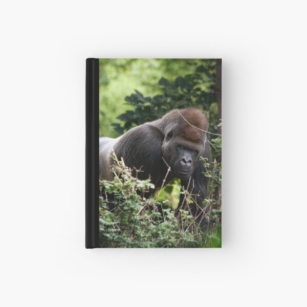 Silverback Hardcover Journal