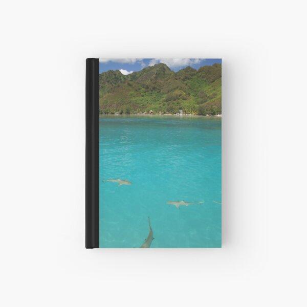 Multiple Black Tip Reef Sharks, Moorea Hardcover Journal