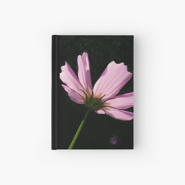 Cosmos Hardcover Journal