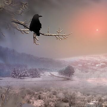 Winter Sun by izenin