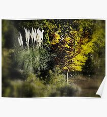 God's gifts  The Outdoors nature  Poster