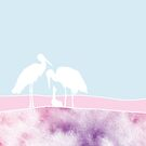 Storks with a baby. Perfect illustration for a neweborn; boy or girl by ColorsHappiness