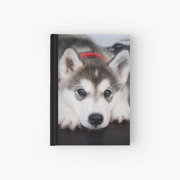 Look how cute I am Hardcover Journal