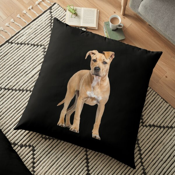 American Staffordshire Terrier Man and Womans Best Friend - Funny American Staffordshire Terrier Gift For Dog Lover Floor Pillow