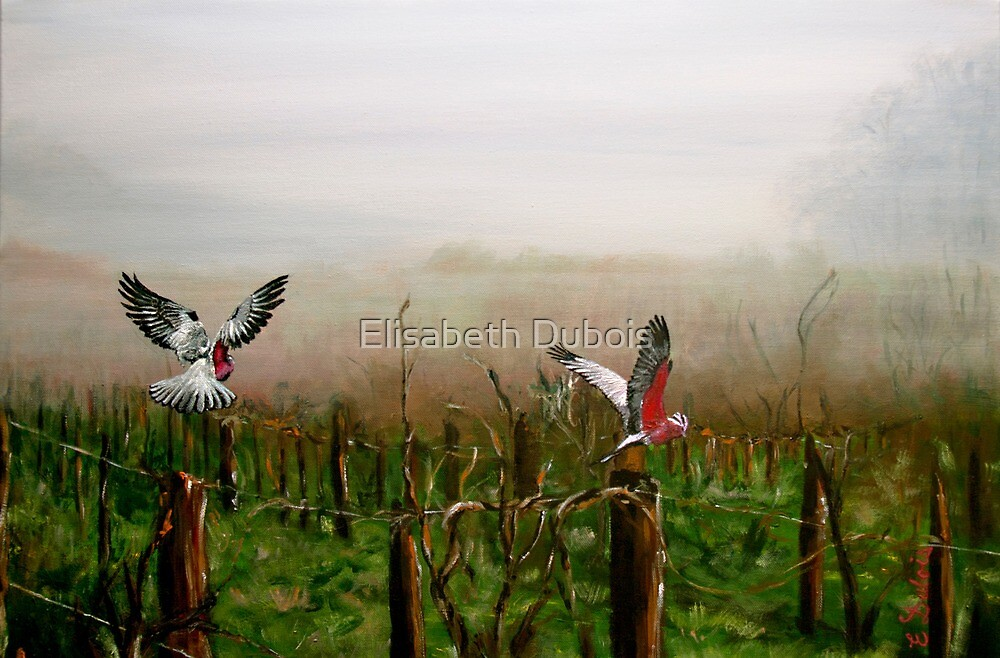 Where are the grapes? - flora - fauna - birds - green by Elisabeth Dubois
