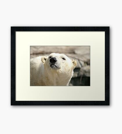 You Want Something? Framed Print