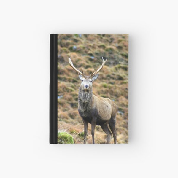 Stag  44 Hardcover Journal