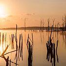 Reservoir at Sunrise  by Debra Fedchin