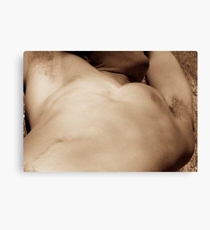 torso 050307 Canvas Print