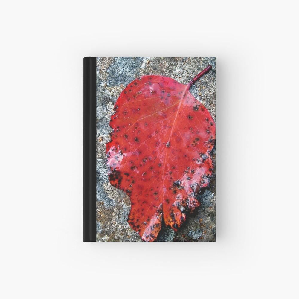 River Gum Hardcover Journal