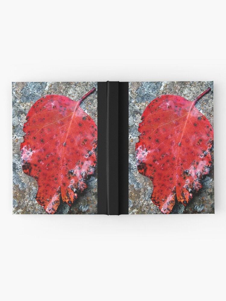 Alternate view of River Gum Hardcover Journal