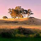 Sun Setting on the Adelaide Hills #3 by Lexa Harpell