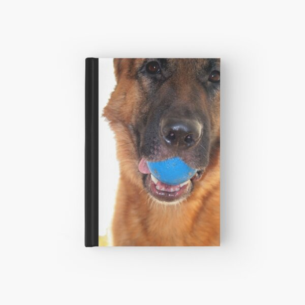 I love  my  Ball Hardcover Journal
