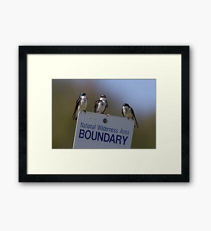 Border Patrol Framed Print