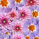 Colorful Summer Flowers Photoart by hurmerinta