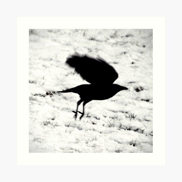 Blackbird: ...fly... Art Print