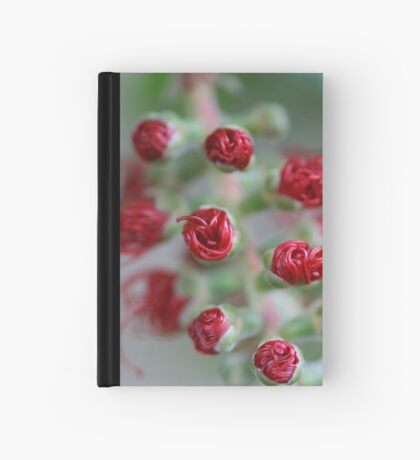 All rolled up Hardcover Journal