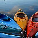 Kayaks by Debra Fedchin