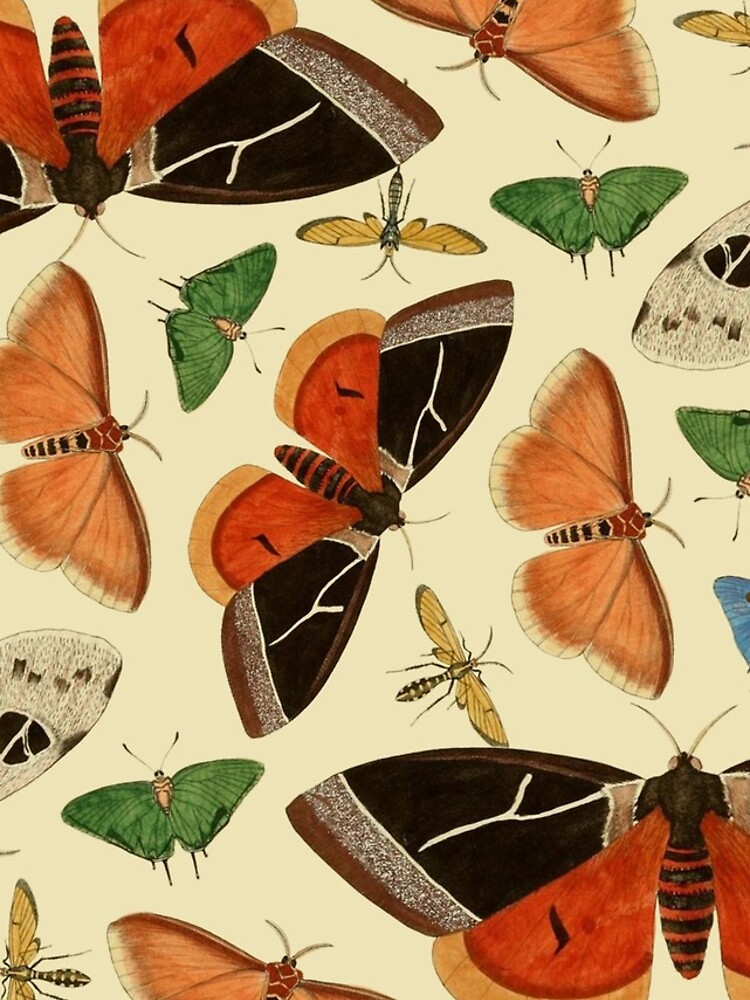 Vintage Butterflies by dickybow