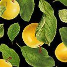 Botanical Vintage Fruit by dickybow