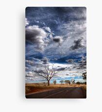 Cootamundra: Open Road Canvas Print