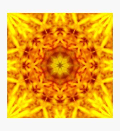 Pollen Dream Photographic Print