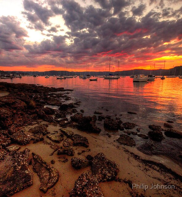 Paradise - Paradise Beach - Avalon NSW - Philip Johnson Fine Art Calendars by Philip Johnson