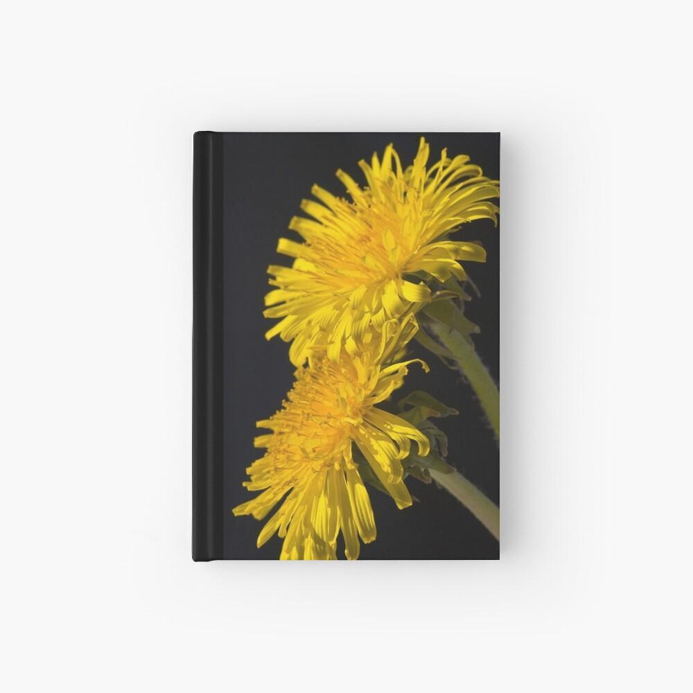 Three Dandelions (Taraxacum officinale) Hardcover Journal