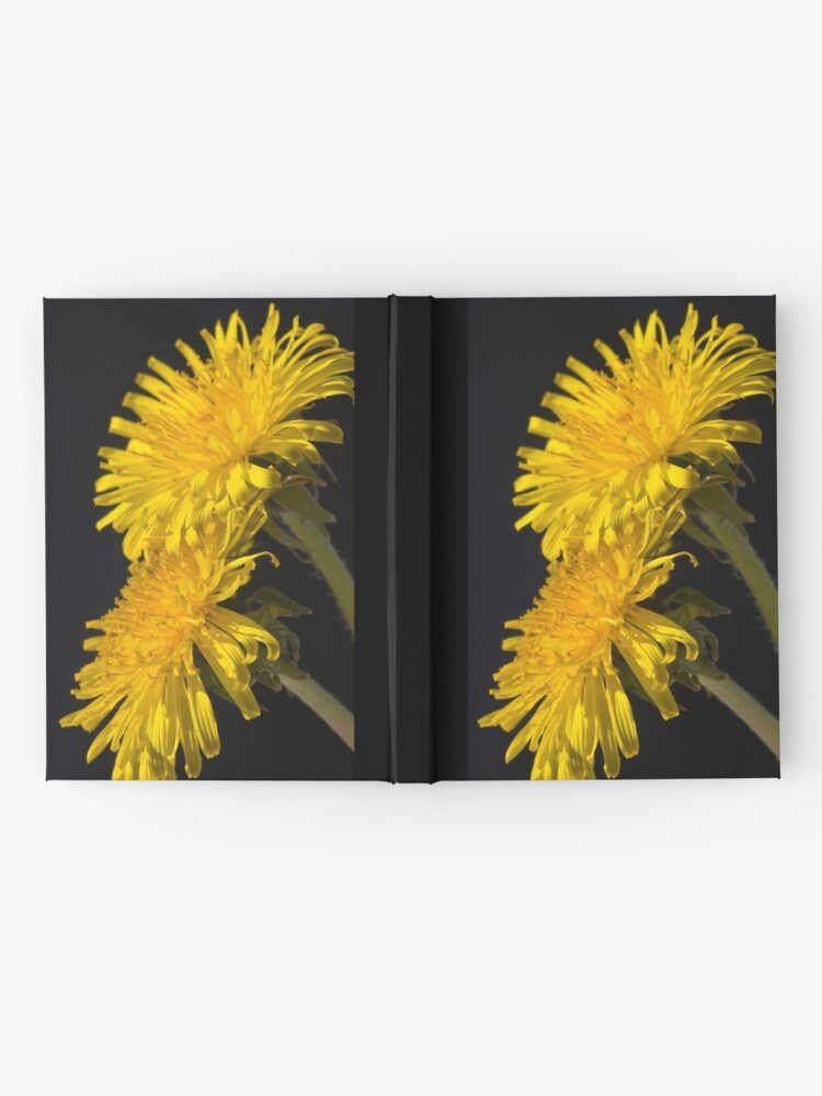 Alternate view of Three Dandelions (Taraxacum officinale) Hardcover Journal