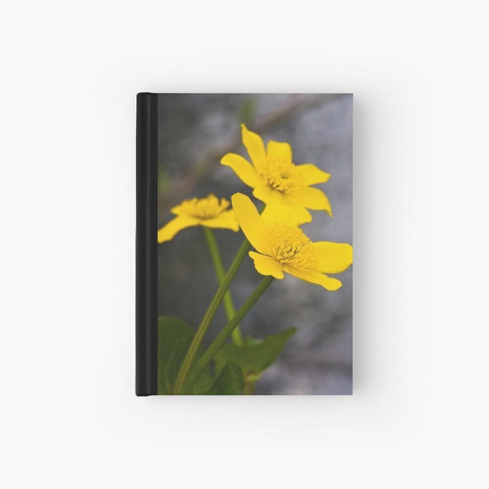 Lesser Celandine (Ranunculus ficaria) Hardcover Journal