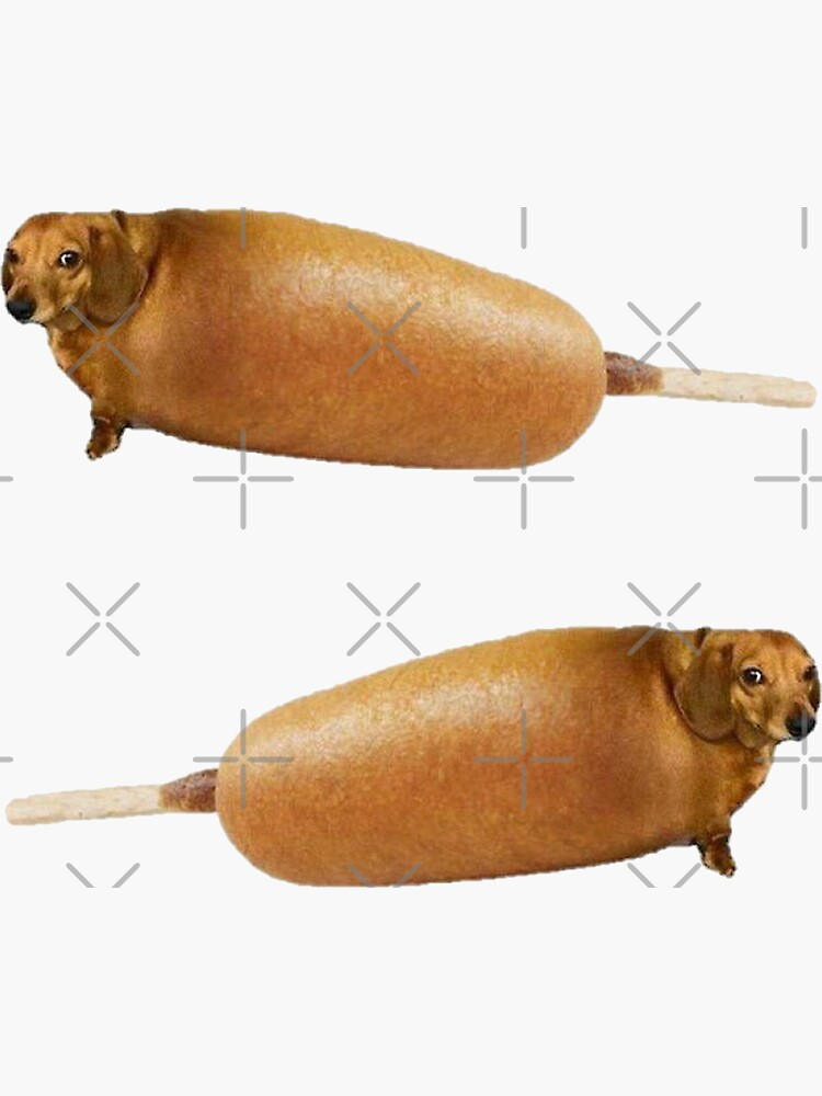 Perros de maíz de Elisecv