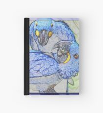 Chatter Boxes Hardcover Journal